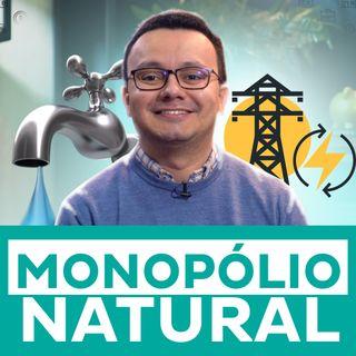 O que é monopólio natural?