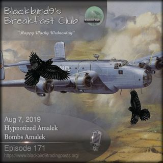 Hypnotized Amalek Bombs Amalek - Blackbird9 Podcast