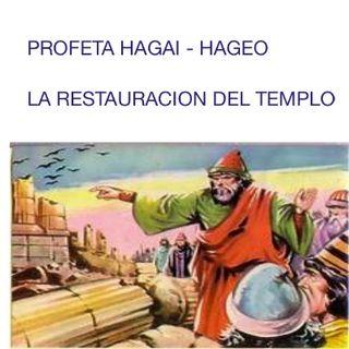 PROFETA HAGEO Y LA RESTAURACION DEL TEMPLO DEL ALTISIMO