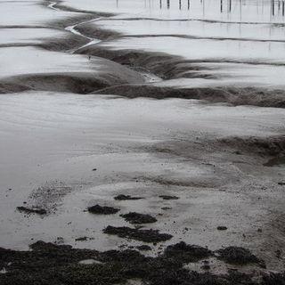 Marble Mudflow
