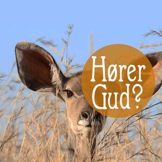 Hører Gud bønn?