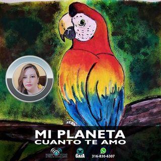 NUESTRO OXÍGENO Mi planeta cuanto te amo - Sonia Janeth López