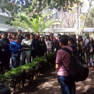 Alistan operativo de vigilancia por manifestación en CU