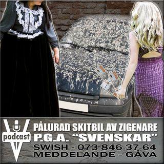 """PÅLURAD SKITBIL AV ZIGENARE P.G.A. """"SVENSKAR"""""""