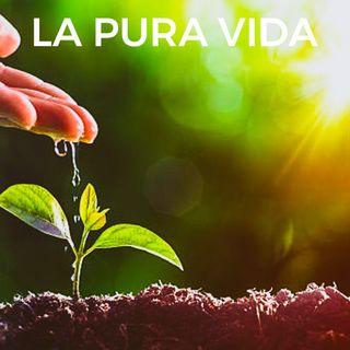LA PURA VIDA  PROGRAMA  4.  PURA JANDA