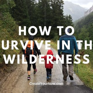 1525 How to Survive in the Wilderness