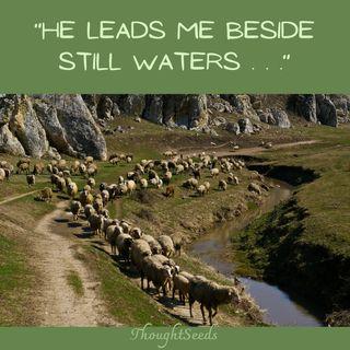 Episode 66: The Good Shepherd, Part 2