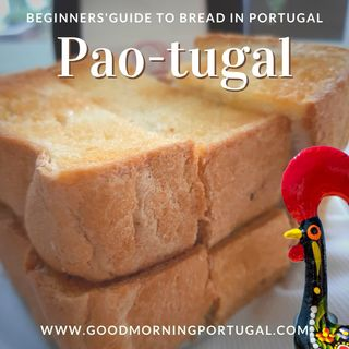 Portugal news, weather & today: bread, wine & mushrooms
