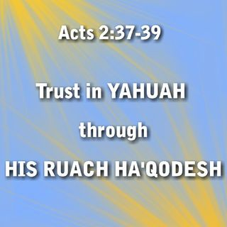 YE R OF YAH LITTLE CHILDREN | DAY 41 OMER COUNT | PS. 41-91-141 | LOVE YAHUAH RUACH YAHUAH YAHUSHA 100% ALL THE TIME!]