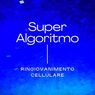 Super Algoritmo Giovinezza Cellulare - esercizio