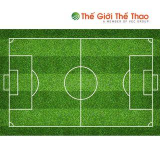 Sân bóng TheGioiTheThao