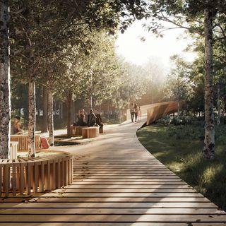 3000 alberi al posto di un allevamento intensivo: un nuovo bosco lungo la Fi- Pi-Li