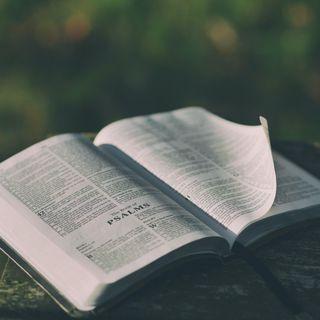 Czytanie dnia - J21 - Szymonie czy kochasz mnie bardziej