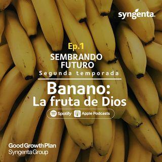 Ep.1 La fruta de Dios