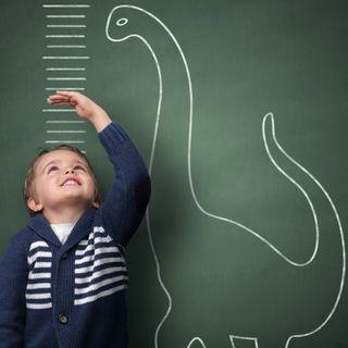 Quanto delle tue lezioni investi sulle Soft Skills?