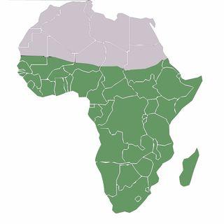Afrika Forever.