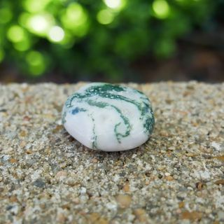 Tree Agate Meaning Benefits and Spiritual Properties
