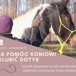 Podcast 18: Jak pomóc koniowi polubić dotyk