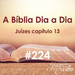 Curso Bíblico 224 - Juízes Capítulo 13 - O nascimento de Sansão - Padre Juarez de Castro