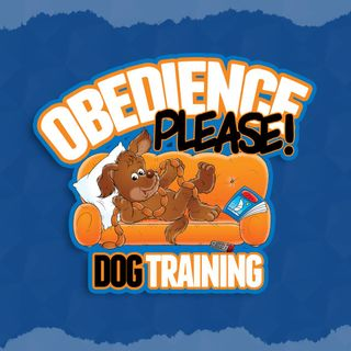 How Dog Training Benefits You & Your Pet