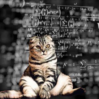 5 - Animali domestici e Modelli Statistici