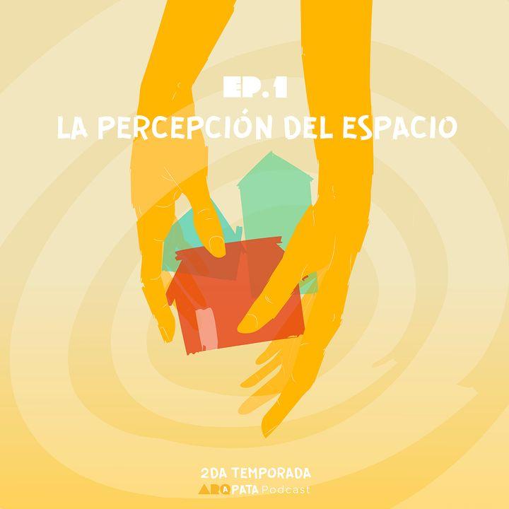 T2E1: La percepción en la arquitectura con Felipe Beltrán