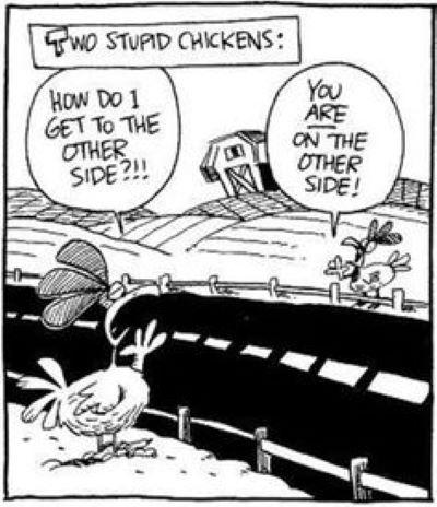 Episode 163 Suicidal Chicken