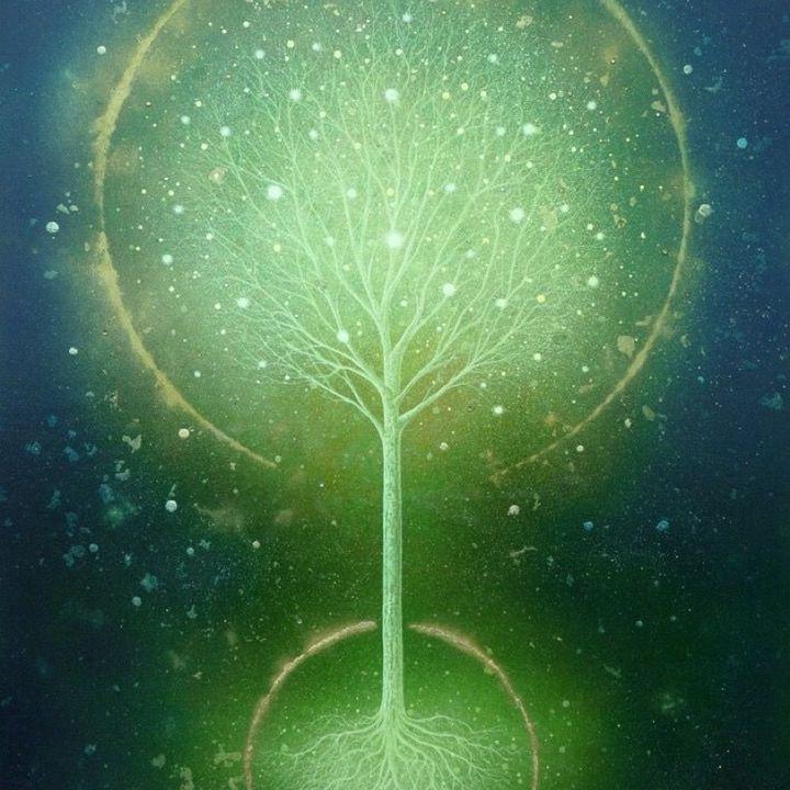 Guida Pratica per il Nuovo Paradigma - no.4 [lettura e commento]