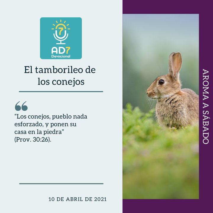 10 de abril - El tamborileo de los conejos - Devocional de Jóvenes - Etiquetas Para Reflexionar