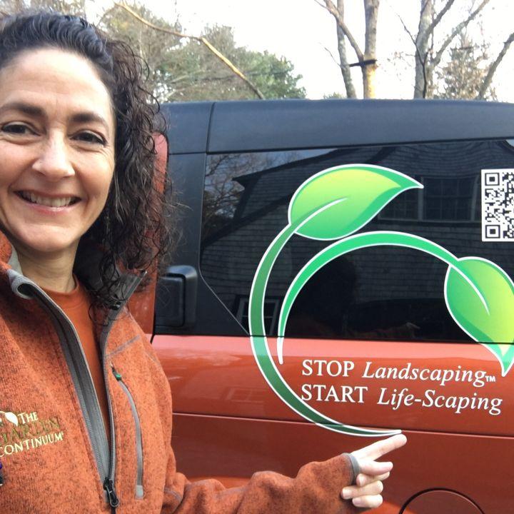 Stop Landscaping, Start Life-Scaping - Monique Allen on Big Blend Radio