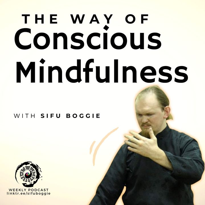 Ep. 9 Denise Chadwick and Sifu Boggie's Lightcode Discussions