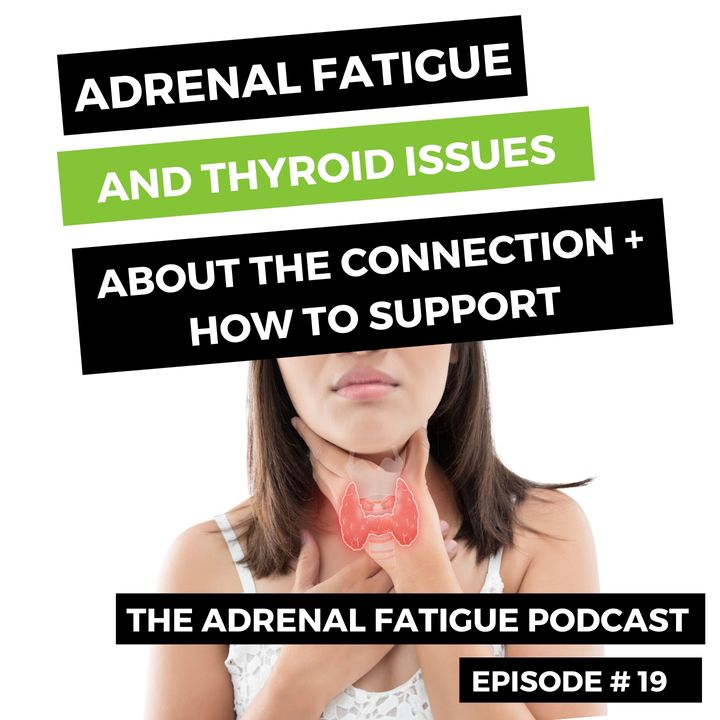 #19: The Connection Between the Thyroid and Adrenals (and what to do about fixing both)