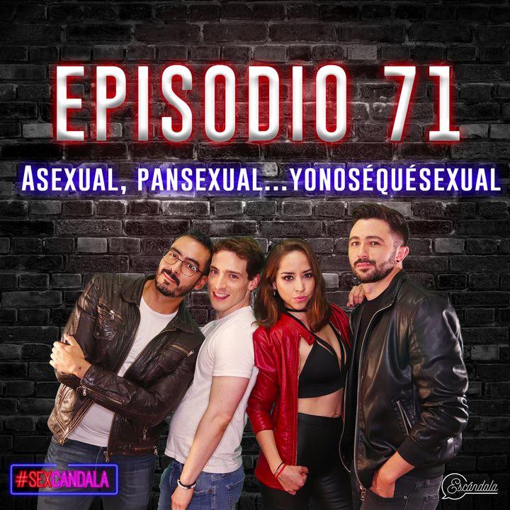 Ep 71 Asexual, pansexual...yonoséquésexual