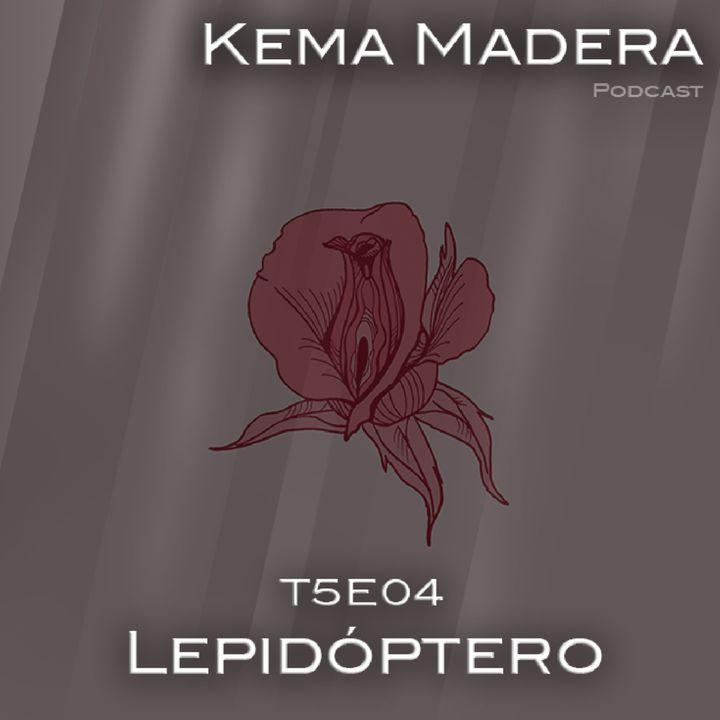 5x04 - Lepidóptero