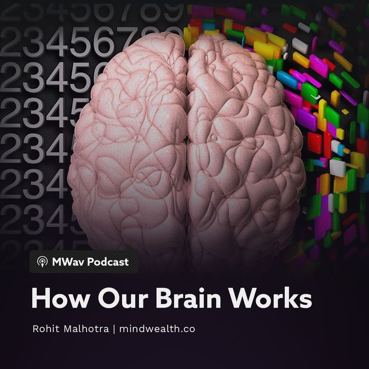 How Our Brain Works