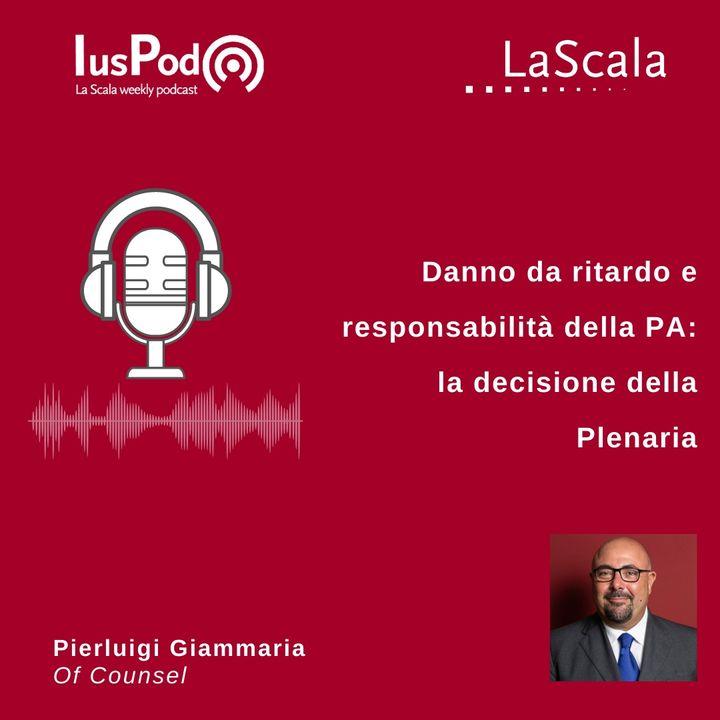 Ep. 106 IusPod Danno da ritardo e responsabilità della PA la decisione della Plenaria