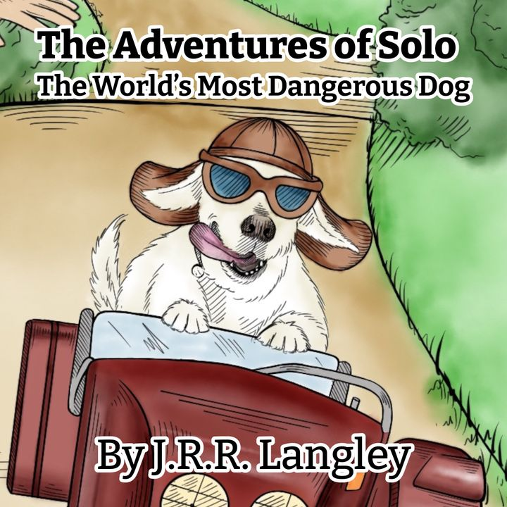 The Adventures of Solo