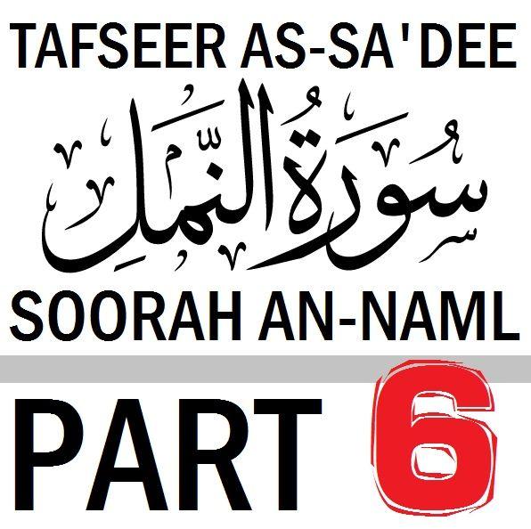 Soorah an-Naml Part 6: Verses 22-35