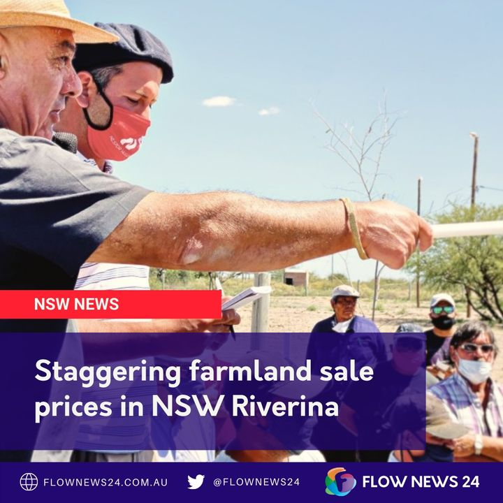 Staggering farm sale prices in the NSW Riverina - with Nikki Reynolds from @TheRural_