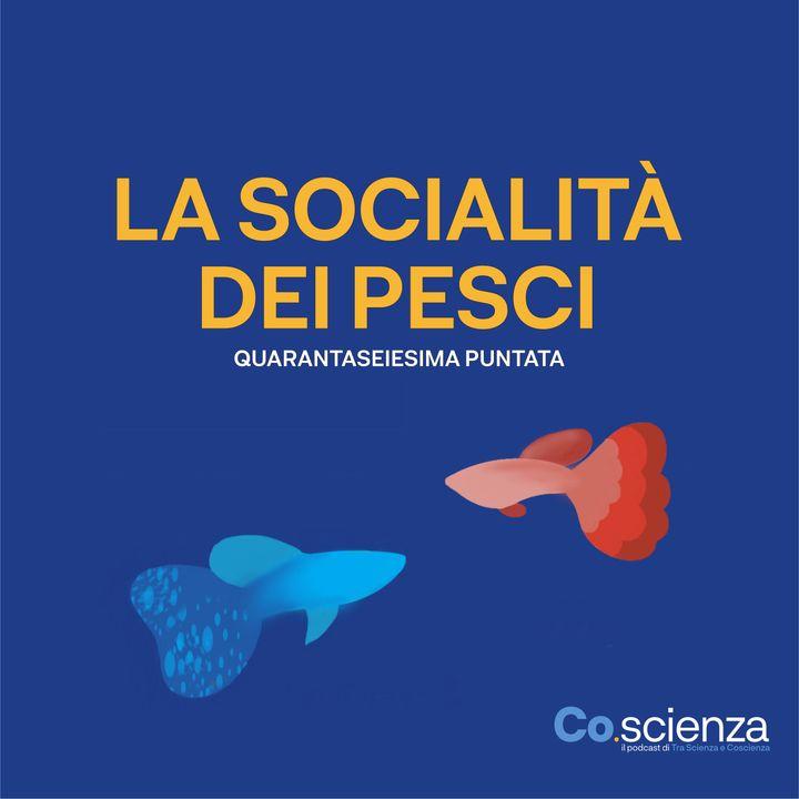 La socialità dei pesci (Quarantaseiesima Puntata)