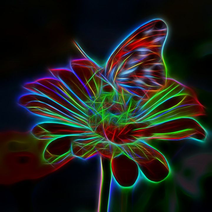 More on Energy Medicine! Are we really all connected? Can a butterfly really flap its wings and alter the path of a tornado?