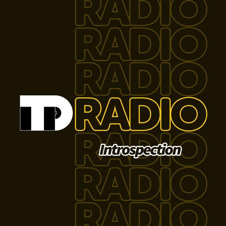 TuneDig Radio: Introspection