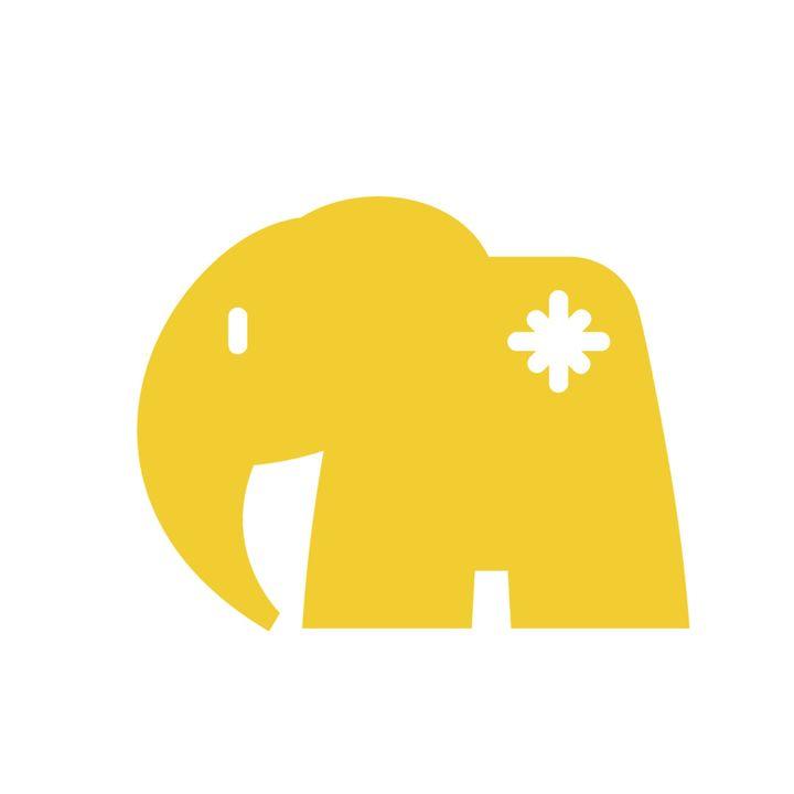 2do Elefante: Diferencias en la libertad para elegir trayectoria profesional