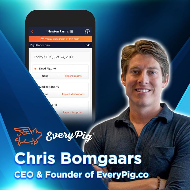 69 EveryPig Offers First-of-Its-Kind Pig Health App