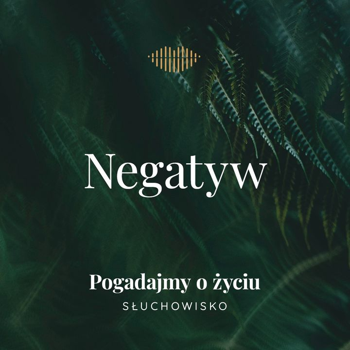 65. Negatyw