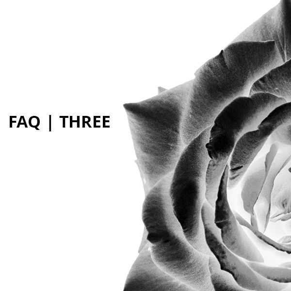 What Is The Other Fruit - Volume Three