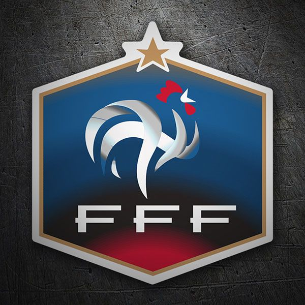 FRANCIA - Analisi sulla nazionale di calcio