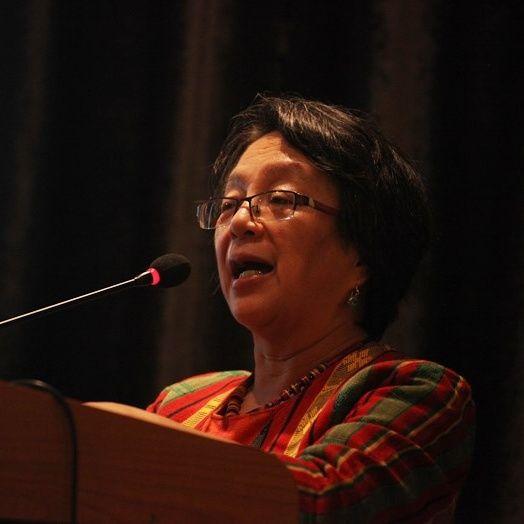 Mensaje de Relatores de la ONU y de la CIDH ante auditorio en Lima