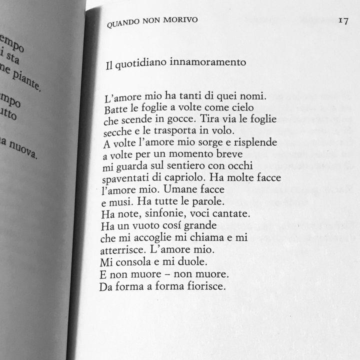 """Mariangela Gualtieri """"Il quotidiano innamoramento"""""""