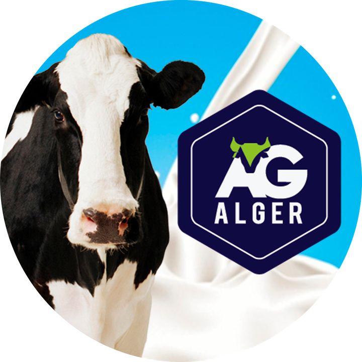 Algercast 1   Nós Somos a Alger
